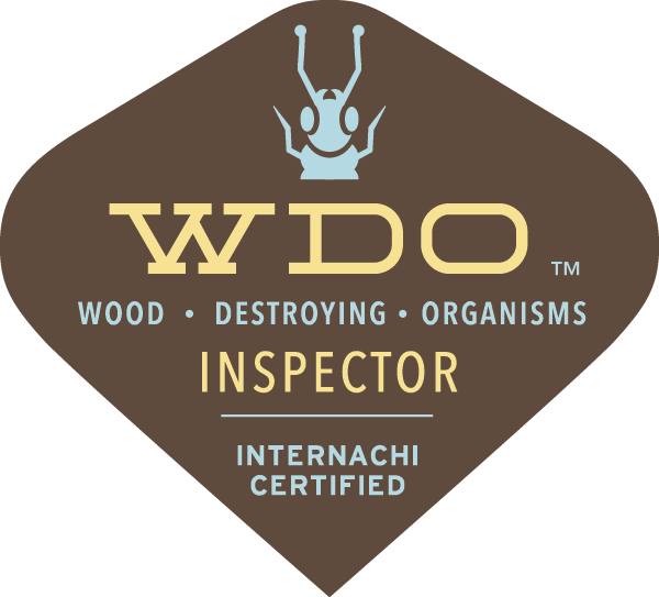 WDI Termite Inspection Fort Worth
