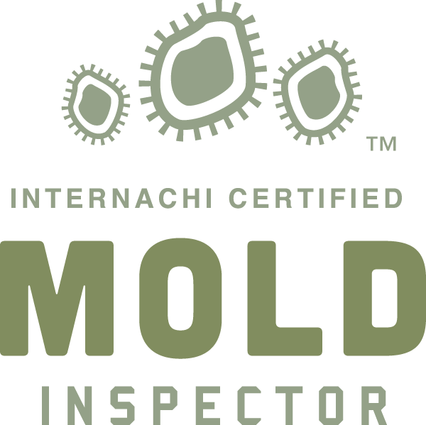 Fort Worth mold inspection near me